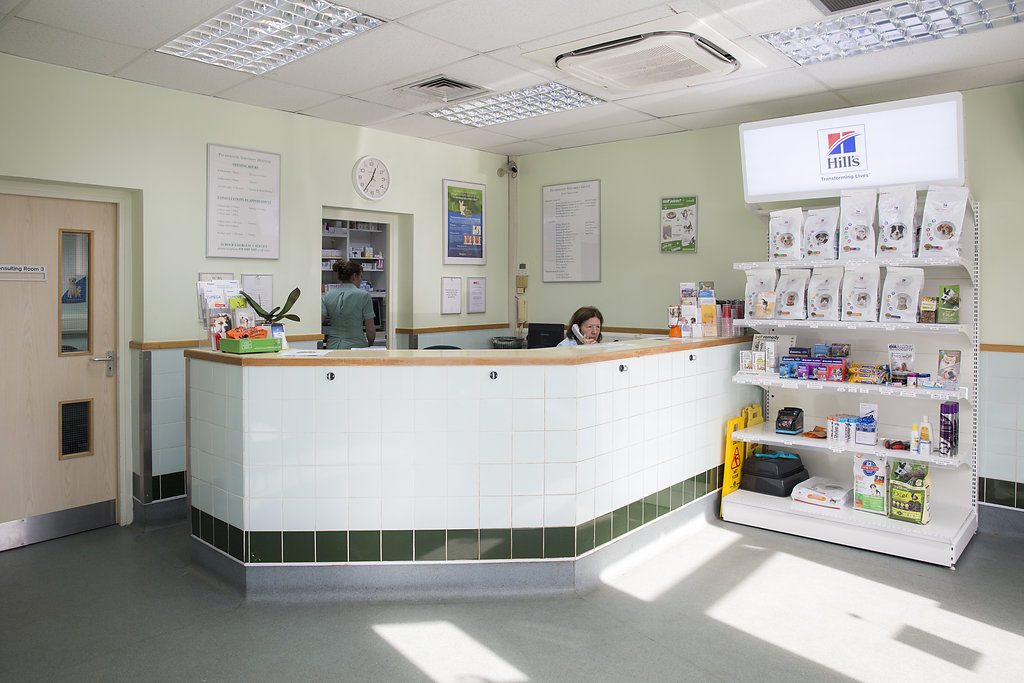 Image of Palmerston Veterinary Hospital Reception